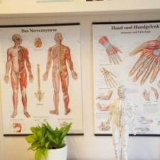 Behandlung Raum 2.4. | ERGOhand Handtherapie